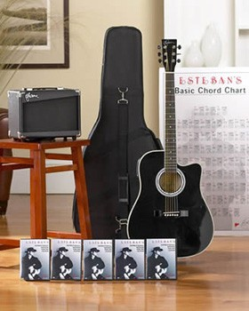 ESTEBAN'S MASTER CLASS GUITAR IN BLACK - 1 PAY